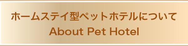 ホームスティ型ペットホテルについて