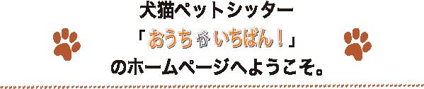 犬猫ペットシッター「おうちがいちばん!」のホームページへようこそ
