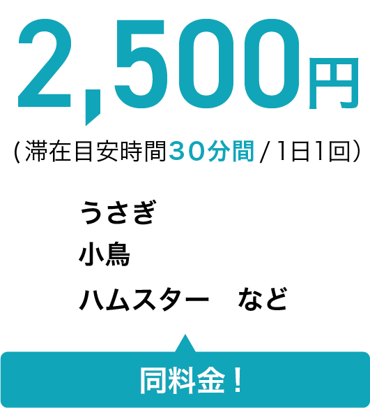 2,500円(滞在目安時間 30分間/1日1回うさぎ 小鳥 ハムスターなど同料金!